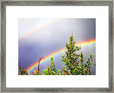 Double Rainbow Sky Framed Print by Destiny  Storm