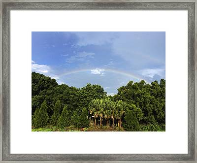 Double Rainbow St. Pete Fl Framed Print
