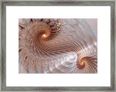 Double Swirl Framed Print