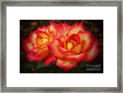 Double The Delight Framed Print
