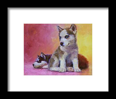 Huskie Framed Prints