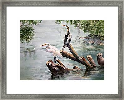 Double Trouble Framed Print by Roxanne Tobaison