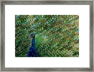 Double Vision Framed Print by Jack Zulli