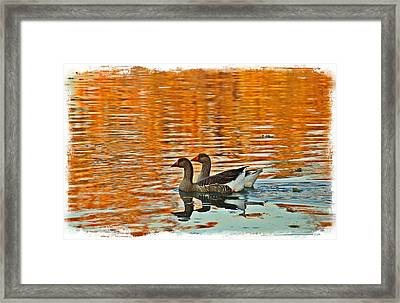 Framed Print featuring the photograph Doubles by Lynn Hopwood
