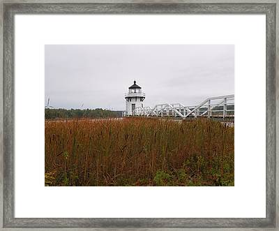 Doubling Point Light Framed Print