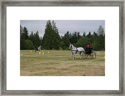 Doubling Up Framed Print by Phil Dyer