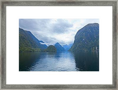 Doubtful Sound Reflections Framed Print by Alexey Stiop