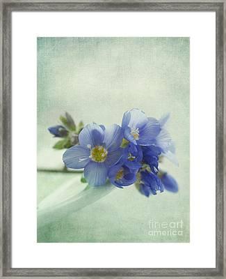Douceur Framed Print