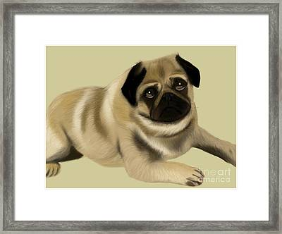 Doug The Pug Framed Print