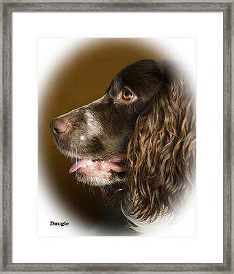Dougie The Cocker Spaniel 2 Framed Print