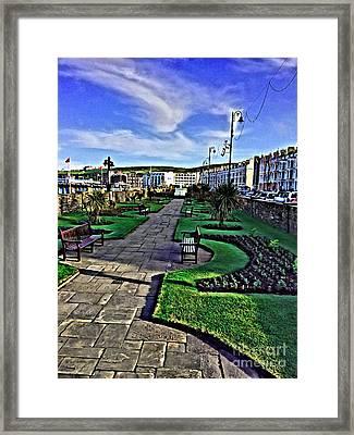 Douglas Park Framed Print