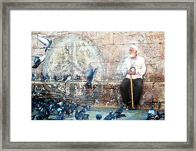 Framed Print featuring the photograph Doves Of Istanbul by Lesley Fletcher