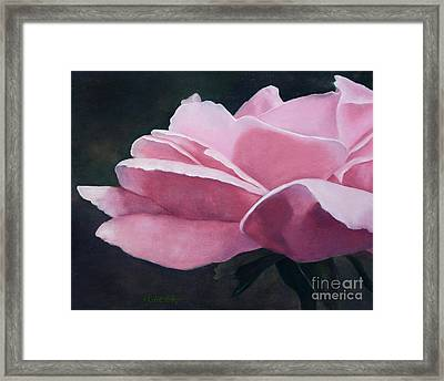 Dow Garden Rose Framed Print by Vickie Sue Cheek