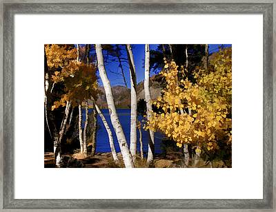Down By The Lake Framed Print by Donna Kennedy