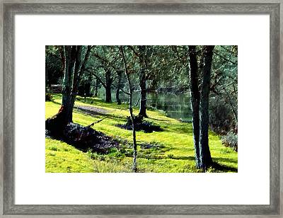 Down By The River Framed Print by Bonnie Bruno