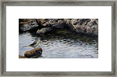 Down By The Water Framed Print
