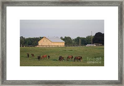 Down Home On The Farm   # Framed Print