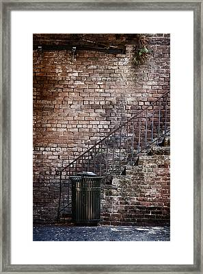Down In The Dumps Framed Print