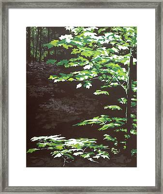 Down In The Holler Framed Print by Jeffrey Bess
