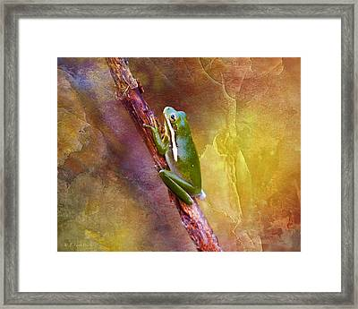 Down In The Swamp Tree Frog Framed Print