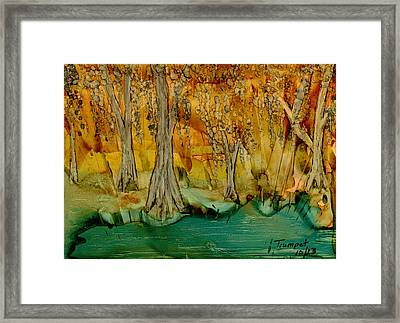 Down On The Bayou Framed Print