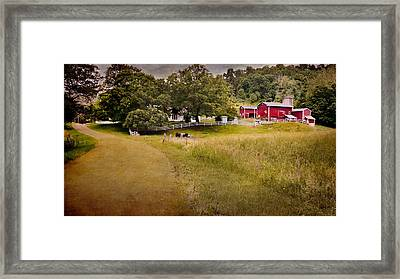 Down On The Farm Framed Print by Bill Wakeley