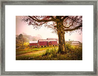 Down On The Farm Framed Print by Debra and Dave Vanderlaan