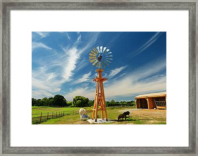 Framed Print featuring the photograph Down On The Farm by Elaine Franklin