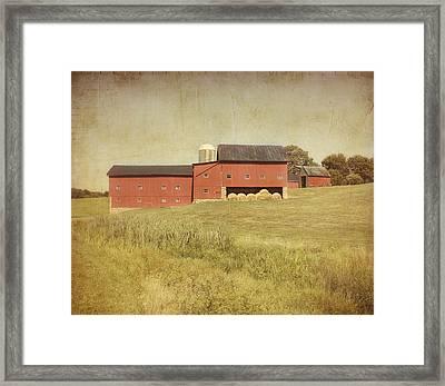 Down On The Farm Framed Print by Kim Hojnacki