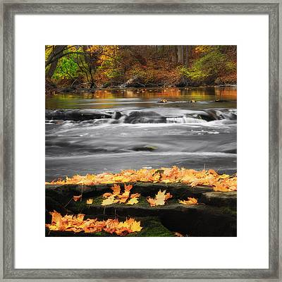Down On The River Square Framed Print by Bill Wakeley