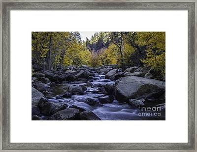 Down River Framed Print by Mitch Shindelbower