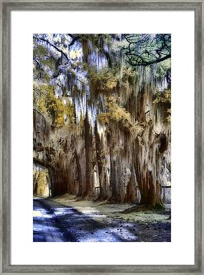 Down The Backroad Framed Print