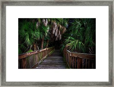 Framed Print featuring the photograph Down The Boardwalk by Pamela Blizzard