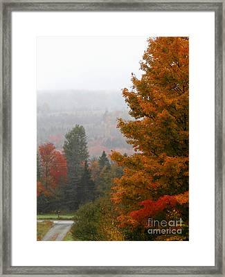 Down The Driveway Framed Print by Steven Valkenberg