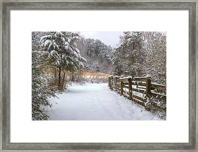 Down The February Lane Framed Print