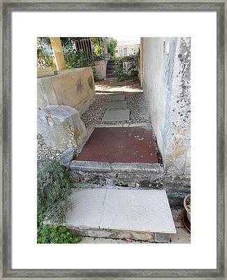 Down The Garden Path Framed Print by Tina Concetta Marzocca