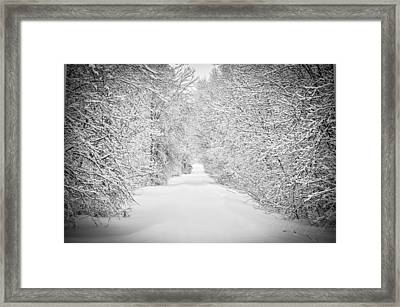Down The Lane Framed Print by BandC  Photography