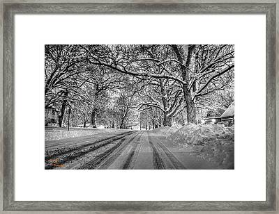 Down The Lane Framed Print by Dan Crosby