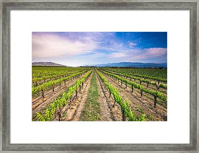 Down The Middle Framed Print by Robert  Aycock