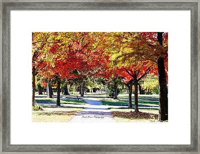 Down The Path Framed Print by Sue Sambdman