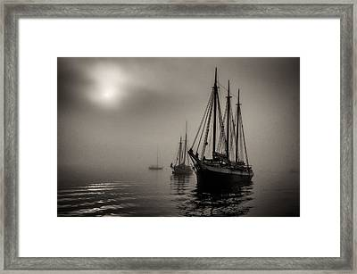 Downeast Fog 1 Framed Print