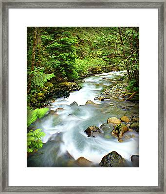 Downstram In The Olympics Framed Print by Marty Koch
