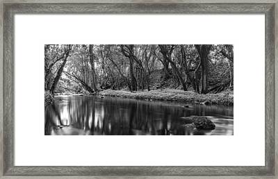 Downstream Framed Print by Jon Glaser