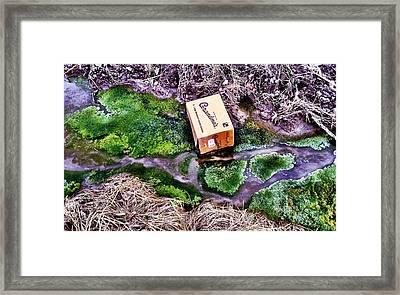 Downstream Framed Print by Marshall Turley