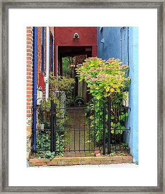 Downtown Garden Path Framed Print