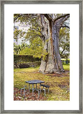 Downtown Old Tree Framed Print by Eyzen M Kim
