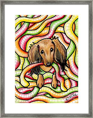 Doxie In Candy Worms Framed Print
