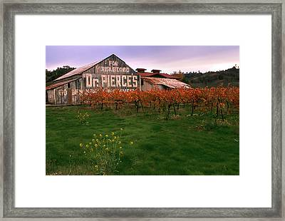 Dr Pierce's Barn Billboard Framed Print by Jerry McElroy
