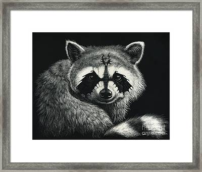 Draccoon Framed Print