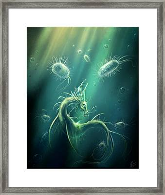 Draco Primordialis Framed Print by Katerina Romanova